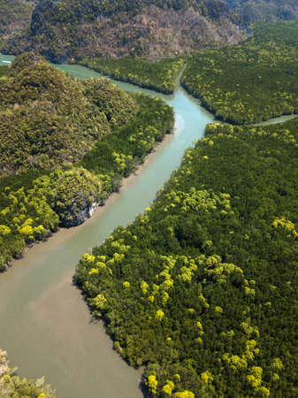 Photo from drone of river in green mangroves, Kilim Geoforest Park, Langkawi, Malaysia. Green trees around the river.