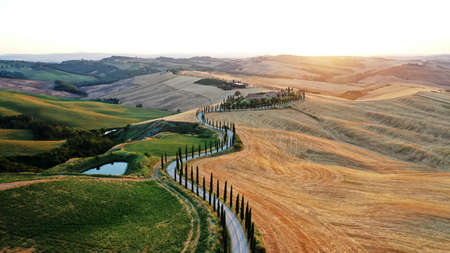 Aerial view of Tuscany landscape and Asciano villa, curved road with cypress trees, agricultural field around at summer sunset. Reklamní fotografie