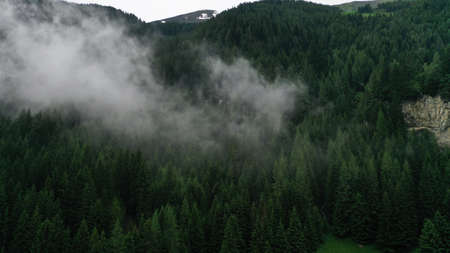 Aerial view of spruce mountain forest in mist, in the fog. Low clouds. Travel mood.