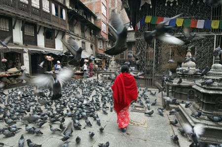 stupas: Millions of pigeons in front of Hindu temple in Katmandu, Nepal Stock Photo
