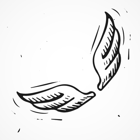 bird wing: Hand drawn angel wings, vector doodle element