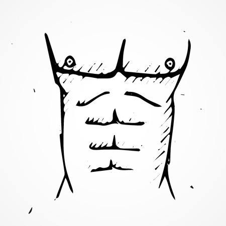 nude abs: Hand drawn abs Vector illustration, doodle isolated