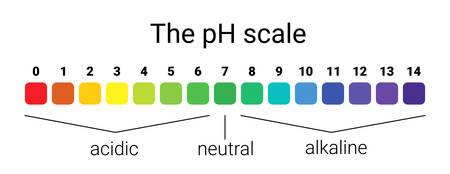 pH-Skala. Infografisches Säure-Basen-Gleichgewicht. Skala für chemische Analyse Säurebasis. Vektor-Illustration. bunte Grafik für Test