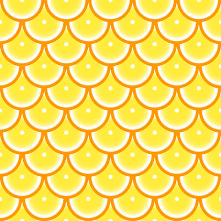 Pattern with orange 矢量图像