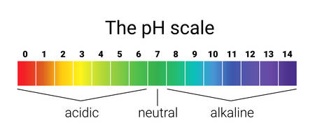 ph scale. infographic acid-base balance. scale for chemical analysis acid base. vector illustration. colorful graph for test