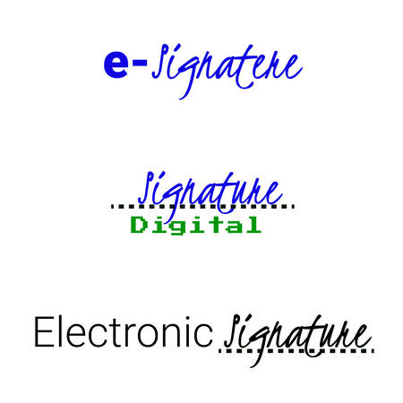 electronic digital signature icon. concept vector illustration