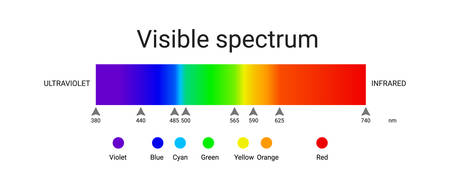 visible spectrum light. infographic of sunlight wavelength. vector Illusztráció
