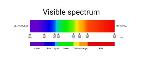 visible spectrum light. infographic of sunlight wavelength. vector illustration Illusztráció