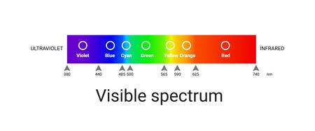visible spectrum light. infographic of sunlight wavelength. vector Stock Illustratie