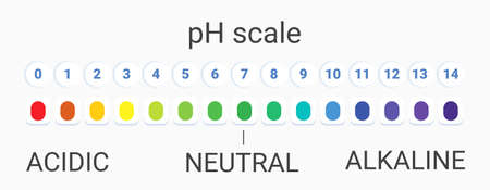 ph scale value. infographic acid-base balance. scale for chemical analysis acid base. vector illustration. colorful graph for test