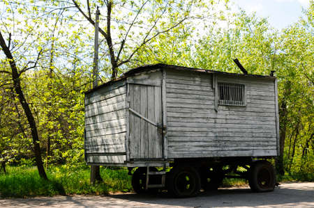 Old grunge trailer near the forest photo