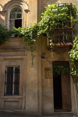windows and doors: picturesque wall of the house with windows, doors and balconies, vine-covered