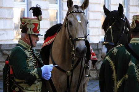 hussar: a man in a suit hussar and two horses, 03.21.14, Budapest, Hungary