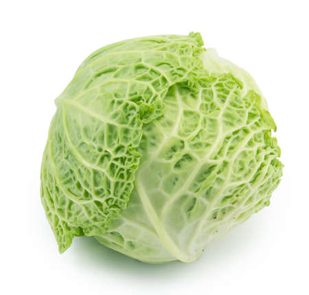 cabbage still life on a white background