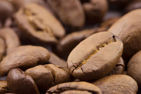 fragrant, ripe coffee beans close-up Stock Photo - 15947901