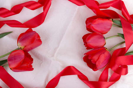 tulip on canvas background with red ribbon photo