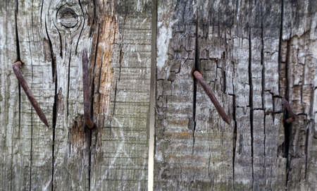 Old wood background rusty nail Stock Photo - 20410837