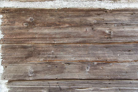 wooden background texture close up photo