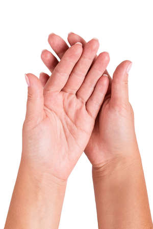two hand isolated on white background photo