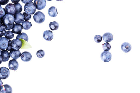 solated: blueberry berry solated on white background
