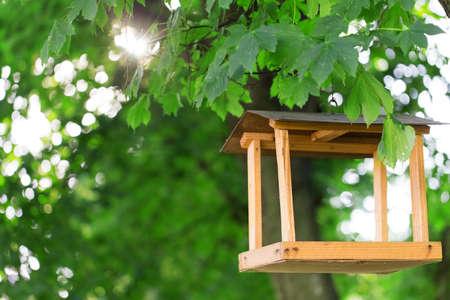 wooden bird feeder leaves trees photo