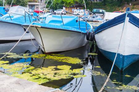 ships at sea: port boats ships sea algae mud