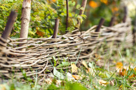woven: wooden woven fence outside nature