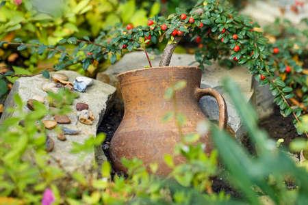crock: crock pot flower outside background