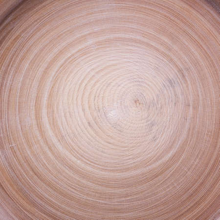wood cut: wood cut circles texture background Stock Photo