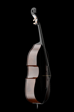 contra bass: Contrabass. Isolated on black background. 3d illustration