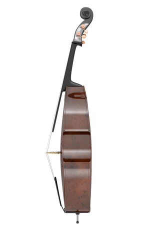 contra bass: Contrabass. Isolated on white background. Include clipping path. 3d illustration