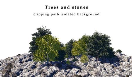 Stenen en bomen geïsoleerd op witte achtergrond zijn onder andere clipping path. 3D illustratie Stockfoto