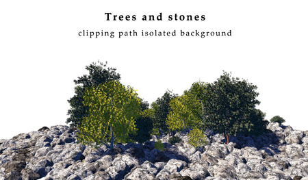 Stones and trees  isolated on white background include clipping path. 3D illustration