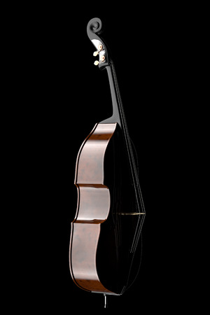 contra bass: Contrabass. Isolated on black background. Include clipping path. 3d illustration