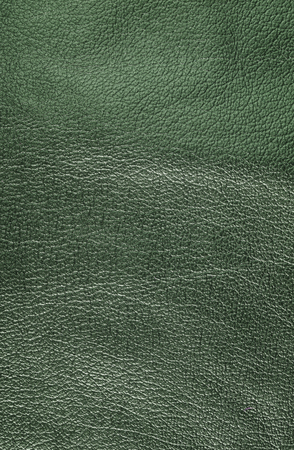 leatherette: Green leather texture. Verticall, close up