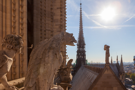 Gargoyle and spire on roof of Notre-Dame de Paris. Paris, France