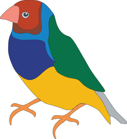 Bird parrot in color 01 Vector