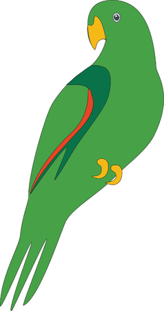 Bird parrot in color 02 Vector