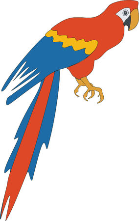 Bird parrot in color 03 Vector