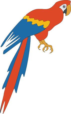 Bird parrot in color 03 Stock Vector - 5067919