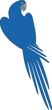 Bird pappagallo nel colore 04 Vettoriali