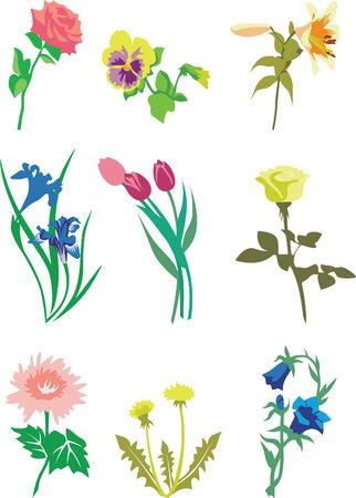 Flower set in color 01 Vector