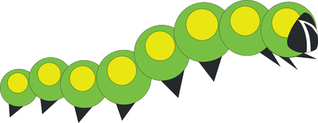 little caterpillar Vector