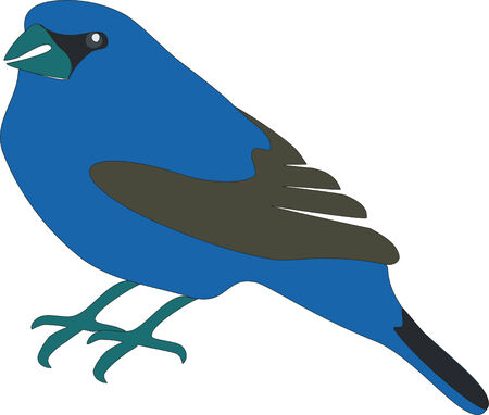Blue bird in color 01 Vector