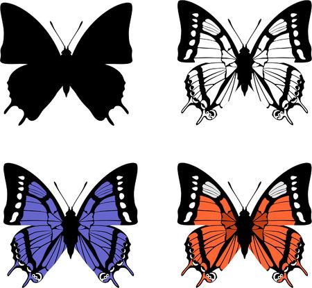 ベクトル。蝶セット 04