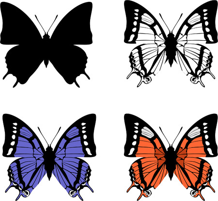 Vector. Butterfly set 04