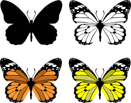 Vector. Butterfly set 10 Stock Vector - 6125978