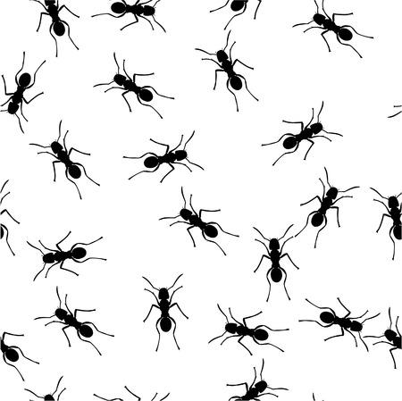 hormiga hoja: Vector. Ornamento transparente en color 152 Vectores