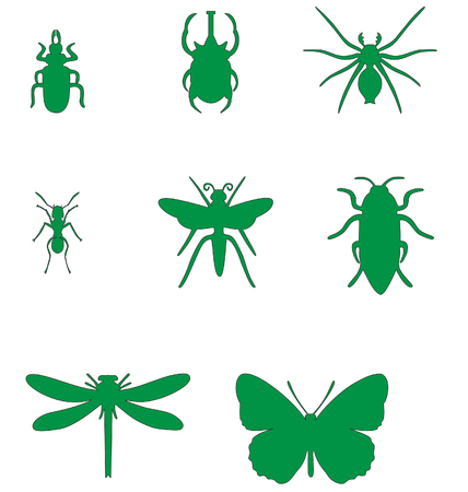 Insect set in color  02 Vector