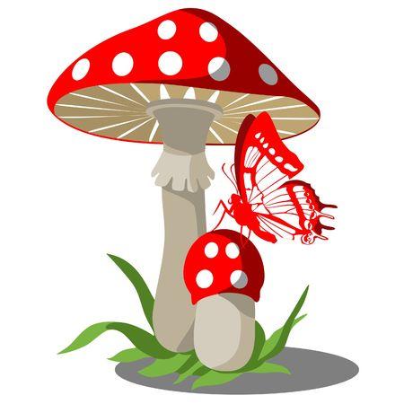 Funghi con farfalla  Vettoriali